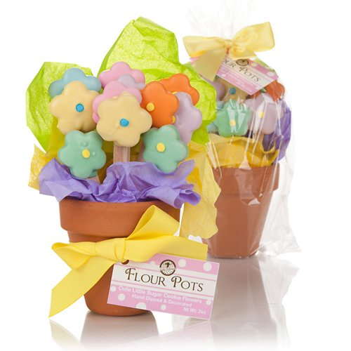 Cookie Bouquet Gift Basket - Springtime Flower Pot Cookies - 12 Cookies
