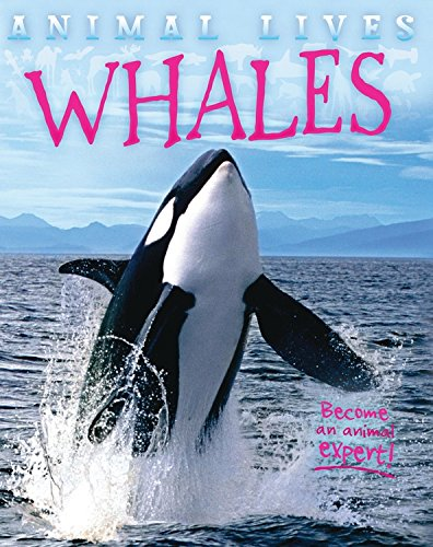 Whales (Animal Lives) pdf