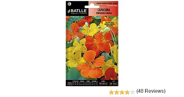Semillas de Flores - Capuchina Trepadora variada - Batlle: Amazon ...