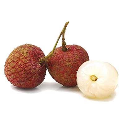 10pcs Fresh Lychee Litchi Seeds Delicious Sweet Seasonal Fruit Bonsai : Garden & Outdoor