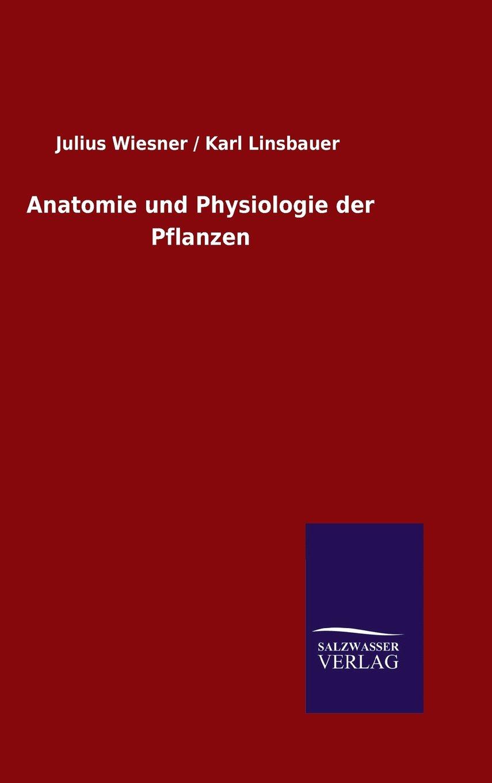 Gemütlich Die Anatomie Einer Pflanze Fotos - Menschliche Anatomie ...