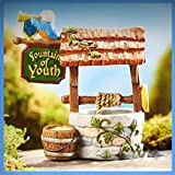 Fairy Garden Fun Fountain Of Youth Well Medieval Times Mini Dollhouse GC311 - My Mini Fairy Garden Dollhouse Accessories for Outdoor or House Decor