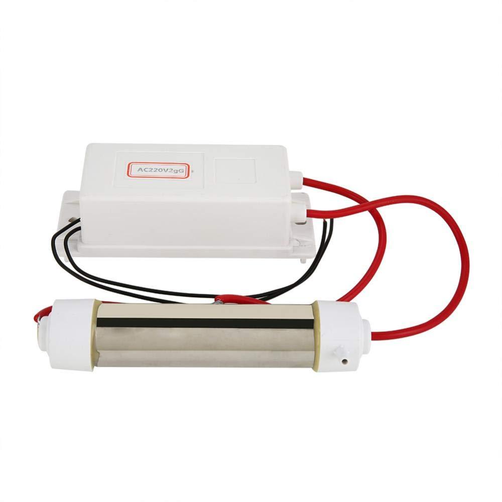Generador de ozono, Ozonizador Ionizador Purificador de agua y aire Máquina de esterilización de frutas vegetales, Adecuado para purificación de aire y agua(2g)