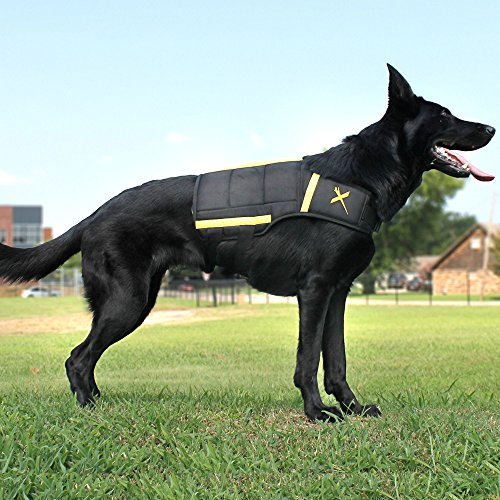 Xdog Weight Vest for Dogs, Durable Exercise Dog Vest To Help With Obesity, Anxiety and Help Improve Cardiovascular Health, For All Breeds, Free Weight Bags Included. (LG) by Xdog