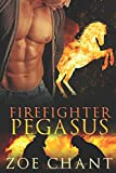 Firefighter Pegasus (Fire & Rescue Shifters)