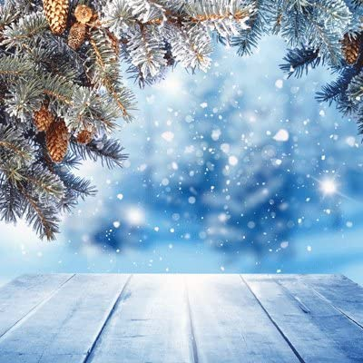 5pcs 12x12 Scrapbook Papers by Ella /& Viv Winter Wonderland Blue Christmas