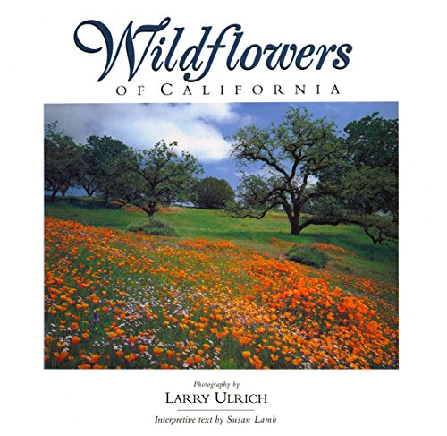 Wildflowers of California