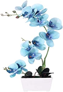 LingRenDu Orchid Plant for Artificial Flowers,Orchids Artificial,Orchid Arrangement,Orchid Plant Perfect Packaging 11 Heads 4 Color with Woodiness Vase for Environmental Protection (Blue)