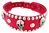 28 Inch Hot Pink Leather Skull Studded Dog Collar Large, My Pet Supplies