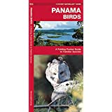 Panama Birds (Pocket Naturalist Guide)