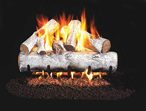 RealFyre White Birch Vented Gas Logs (W-24), 24-Inch ()
