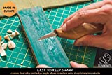 BeaverCraft Wood Carving Detail Knife C15