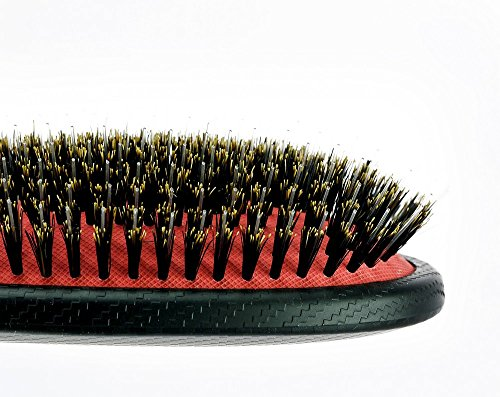 Kent 100% Boar Bristle Nylon Paddle Brush - KS01 - Import It All