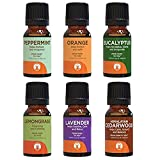 GuruNanda Top 6 Singles Essential Oils Set - Pure & Natural Therapeutic Grade Oil for Aromatherapy Diffuser - Lavender - Peppermint - Eucalyptus - Lemongrass - Orange - Cedarwood (Top 6 Singles Set)