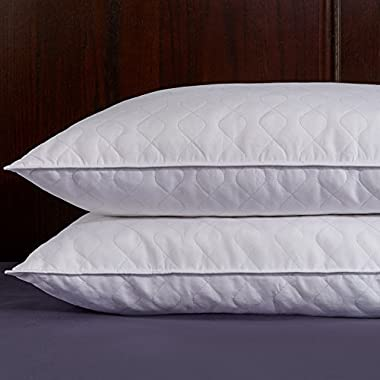 Puredown Quilted White Goose Feather and Down Pillow, Set of 2, White, Standard/Queen Size