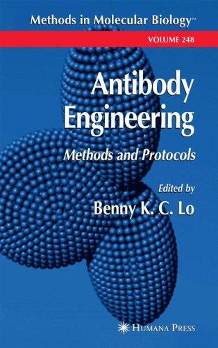 Antibody Engineering: Methods and Protocols (Methods in Molecular Biology)