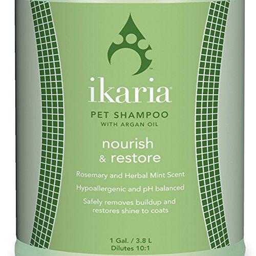 Ikaria IK Nourish Restore Shampoo by Ikaria (Image #1)