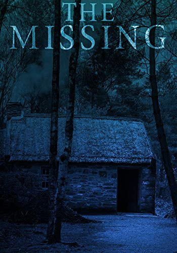 the missing a small town kidnapping mystery kindle edition by