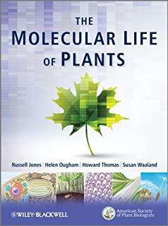 Amazon com: Biochemistry and Molecular Biology of Plants