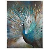 Yosemite Home Decor DCB627 Peacock Prowess Wild Life Painting, 36-Inch