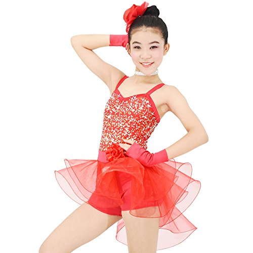 Two Piece Fringe Dance Costumes - MiDee Girls Dance Costume Ballet Biketard
