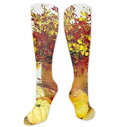 (Compression Socks for Men & Women Roses Vase Pumpkin Stillife Compression Stockings for Runners, Edema)