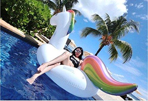 wasinon®Riesiger Erwachsene aufblasbarer Einhorn Pool Floß mit speziellen schnell Ventilen, Schwan Wasser aufblasbar schwebendem Pferd (Pegasus)
