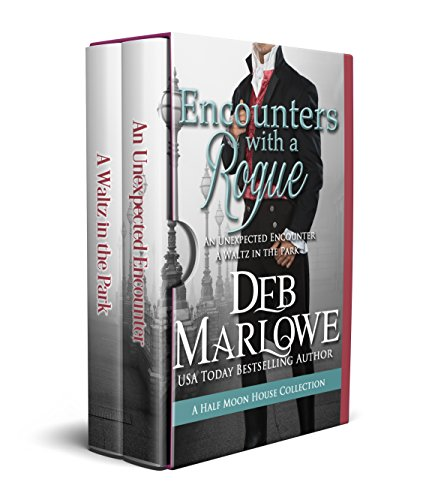 Encounters With a Rogue (Half Moon House ) cover