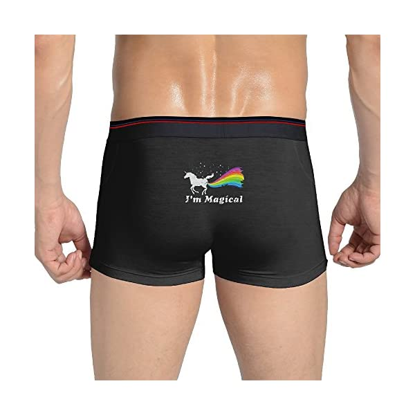 Mens I'm Magical Unicorn in Rainbow Boxer Briefs 3