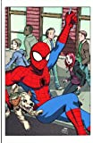 Spider-Man Loves Mary Jane, Vol. 2: The New Girl (v. 2)