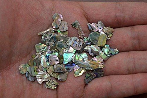 100 PCS Tiny Small Abalone Shell Blank Charms 1/4