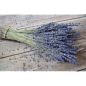 Dried Fragrant Bulk Lavender Bundle for Home Decor, Crafts, or Fragrance