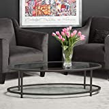 Studio Designs Home 71014 Camber Modern Oval Coffee Table, 48, Pewter/Clear Glass