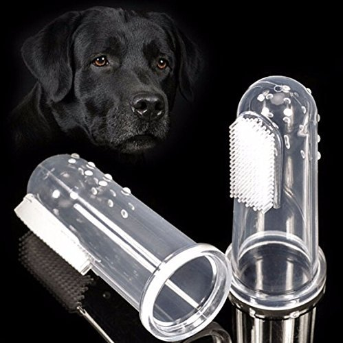 New Pet Toothbrush for Dogs and Cats -Sensitive Dental Hygiene Care Brush Keeps Teeth & Gums Clean, Healthy, and Shiny 5pcs by Unknown (Image #3)