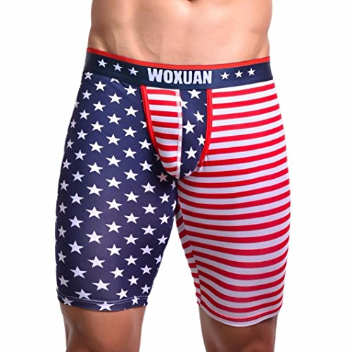 Perman Mens Briefs, Sexy Flag Striped Boxer Bulge Pouch Cotton Long Briefs Underpants (L, Style.1)