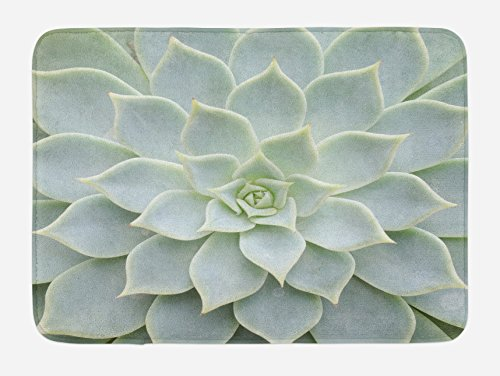Ambesonne Cactus Bath Mat, Cactus Plant Flower Close Up View Photo Image Desert Mexican Hot Natural Plant Artwork, Plush Bathroom Decor Mat with Non Slip Backing, 29.5 W X 17.5 W Inches, Green by Ambesonne