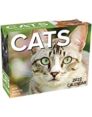 Cats 2022 Mini Day-to-Day Calendar