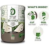 2 Pack of GFruit - 100% Natural & Healthy Graviola Pulp / Soursop / Guanabana Fruit, 20 Oz (Bundle of 2 Jars)