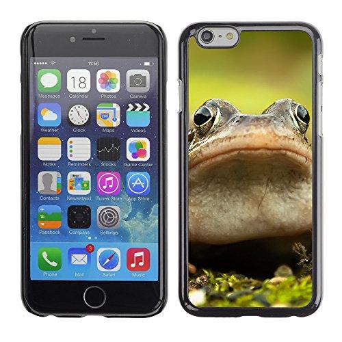 """Premio Sottile Slim Cassa Custodia Case Cover Shell // F00032376 Frog closeup // Apple iPhone 6 6S 6G 4.7"""""""