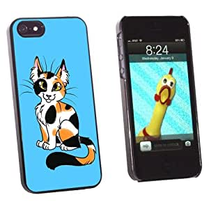 Calico Cat On Blue - Snap On Hard Protective Case for Apple iPhone 5 5S - Black