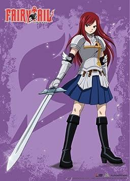 De pared Scroll – Fairy Tail – nuevo Erza Scarlett Anime juguetes con licencia ge60548: Amazon.es: Juguetes y juegos