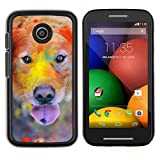 Hard Case Shell Cover Protective Accessory BY RAYDREAMMM - Motorola Moto E - Rainbow Holi Paint Golden Retriever Dog