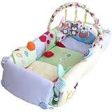 Bassinet to-Go Premium Newborn Infant Baby Portable...