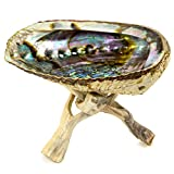 Alternative Imagination 5''+ Hand Selected Premium Abalone Shell with 6'' Natural Wooden Cobra Stand