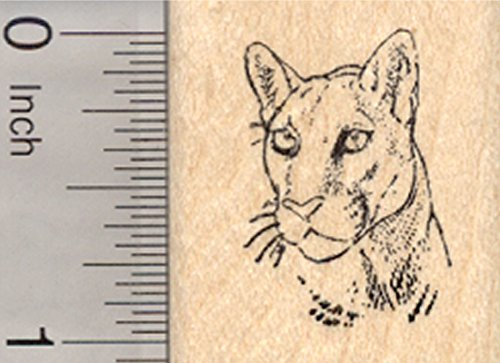 Cougar Portrait Rubber Stamp, Small