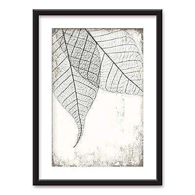 Classic Design, Grand Picture, Framed Black White Leaf Vein Pattern Vintage Background Black Picture Frames White Matting