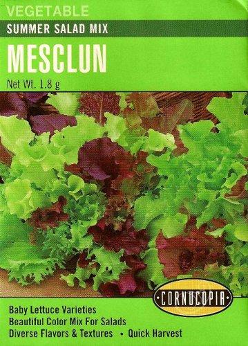 Heirloom Lettuce, Mesclun Summer Salad Mix