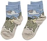 Country Kids Little Boys' Triassic Dino Mix 2 Pair, Khaki/Gray, Sock 6-7/Shoe 6-11