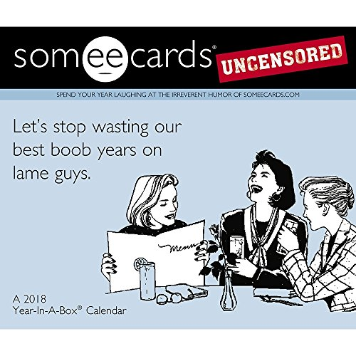 2018 SomeEcards Uncensored Desk Calendar