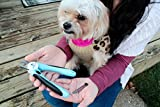 Adyah-Professional-Dog-Nail-Clippers-with-Safety-Guard-Pet-Toenail-Trimmers-with-Non-Slip-Grip-Safe-Home-Grooming-Kit-for-Small-Medium-and-Large-Canines